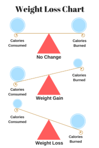 A calorie balance equals no weight change, caloric surplus equals weight gain, calorie deficit equals weight loss.