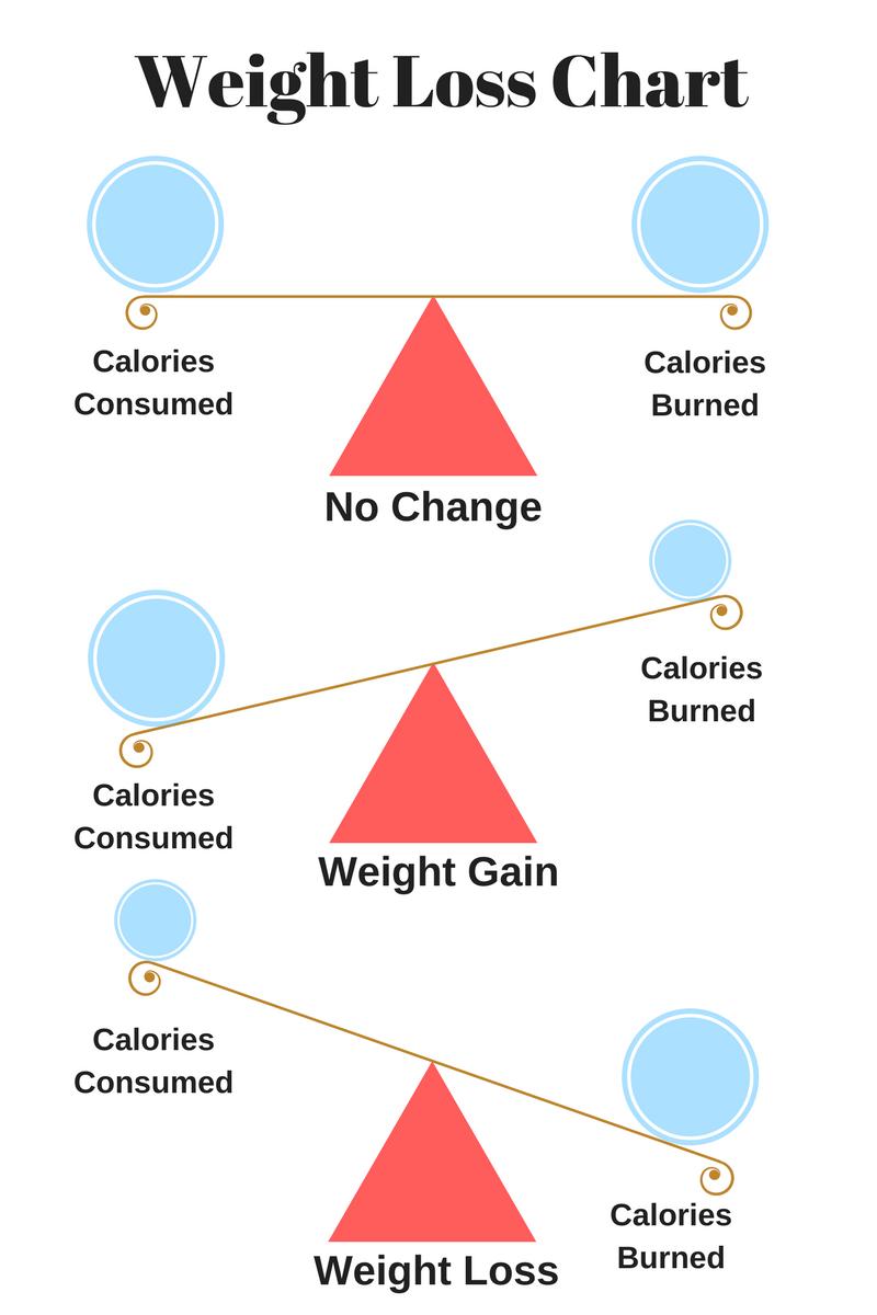 a calorie balance equals no weight change caloric surplus equals weight gain calorie deficit